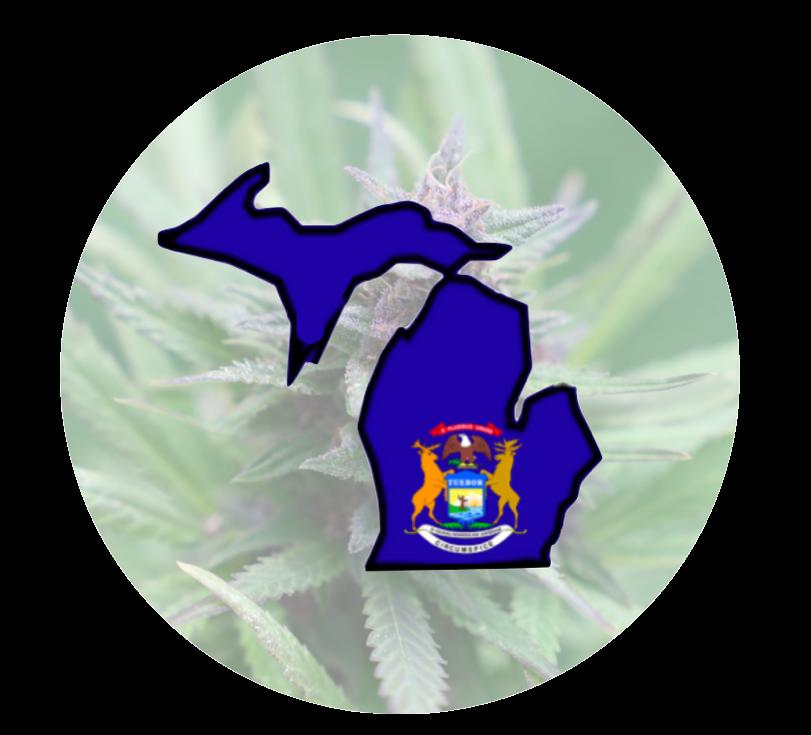 Michigan State Badge
